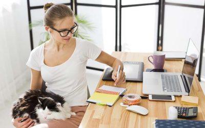 Comment optimiser son espace de travail à son domicile pour augmenter sa productivité?